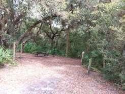 Little Talbot Island State Park in Jacksonville Florida4