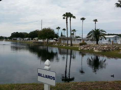Orchid Lake Rv Resort in New Port Richey Florida6