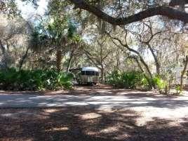 Oscar Scherer State Park in Osprey Florida7