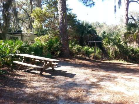 Oscar Scherer State Park in Osprey Florida8