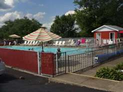 Palace CG pool