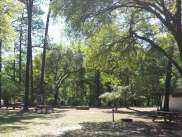 Sesquicentennial State Park in Columbia South Carolina9