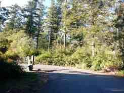 bay-view-state-park-campground-wa-19