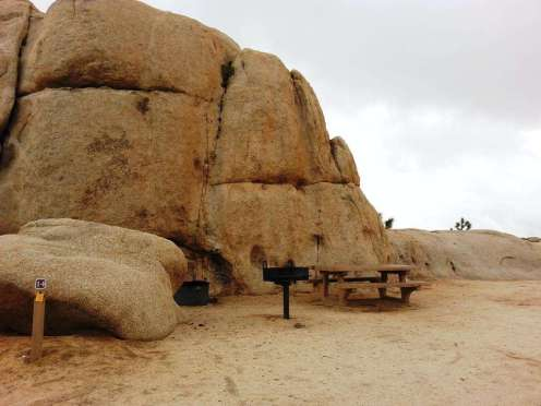 belle-campground-joshua-tree-national-park-04