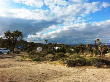blackrock-campground-joshua-tree-national-park-6