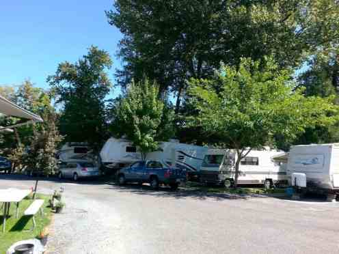 bridgeview-rv-resort-grants-pass-or-3