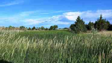 buffalo-bill-state-park-nebraska-10