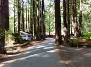 burlington-campground-humboldt-redwoods-state-park-04