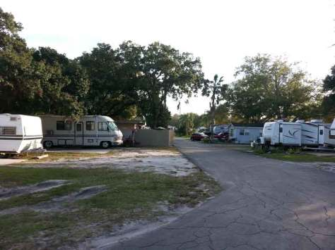 Caladesi RV Park in Palm Harbor Florida Roadway
