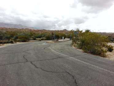 cottonwood-campground-joshua-tree-national-park-02