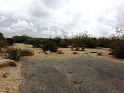 cottonwood-campground-joshua-tree-national-park-04