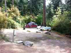Forest Campground