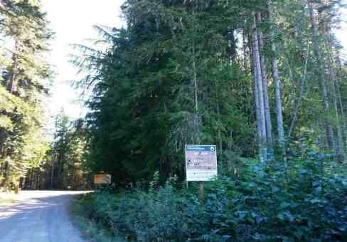 deer-park-campground-olympic-national-park-02