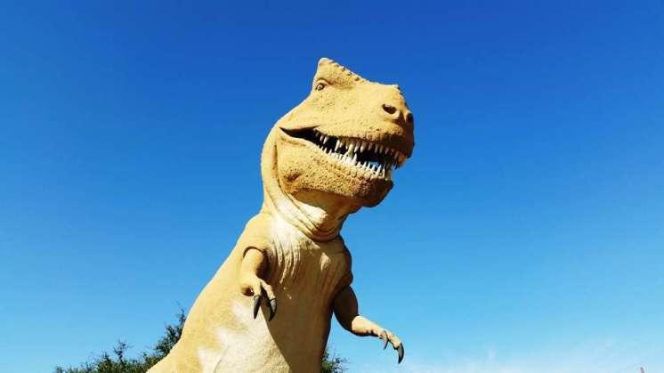 dinosaur-valley-state-park-campground-glen-rose-tx-02