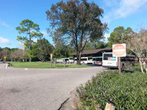 The Campsites at Disney's Fort Wilderness Resort in Lake Buena Vista Florida Shuttle Area