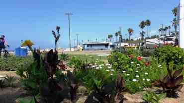 dockweiler-state-beach-rv-park-los-angeles-10