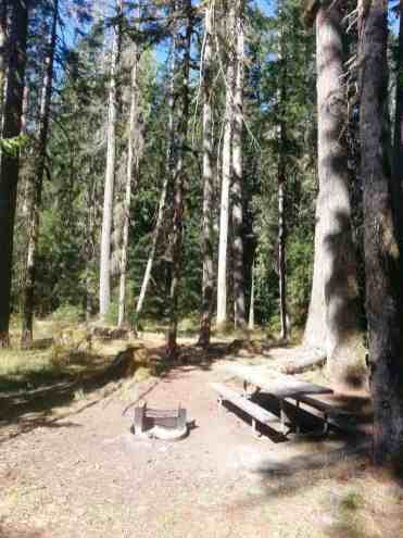 dosewallips-campground-olympic-national-park-09