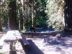 dosewallips-campground-olympic-national-park-13