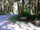 fairholme-campground-olympic-national-park-01