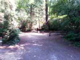 fort-ebey-state-park-campground-12