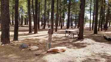 fort-tuthill-county-park-campground-flagstaff-09