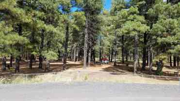 fort-tuthill-county-park-campground-flagstaff-13
