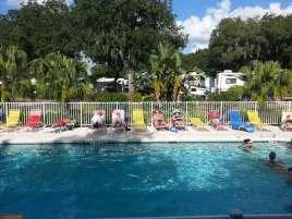 frog-creek-campground-palmetto-florida-pool