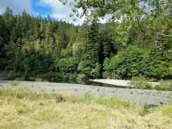 giant-redwoods-cam-destination-myers-flat-ca-14