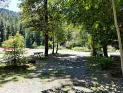 giant-redwoods-cam-destination-myers-flat-ca-30