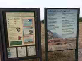 gold-bluffs-beach-campground-17