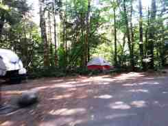 goodell-creek-campground-north-cascade-national-park-07