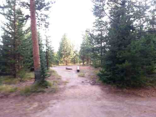 grant-village-campground-yellowstone-national-park-06