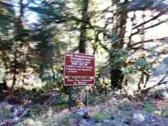 graves-creek-campground-olympic-national-park-09