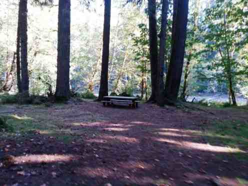 graves-creek-campground-olympic-national-park-10