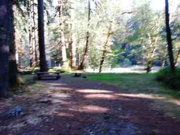 graves-creek-campground-olympic-national-park-11