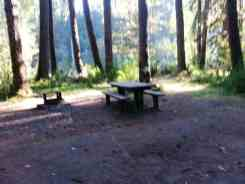 graves-creek-campground-olympic-national-park-14