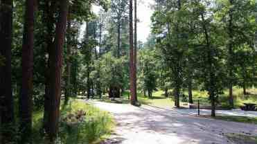 grizzly-creek-campground-blackhills-sd-03