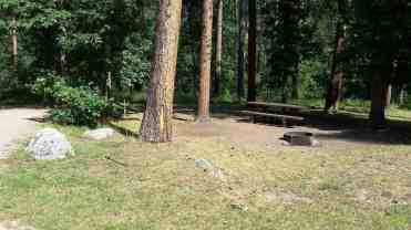 grizzly-creek-campground-blackhills-sd-10