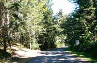 heart-o-the-hills-campground-olympic-national-park-02