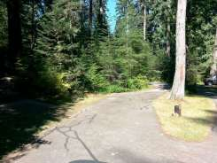 heart-o-the-hills-campground-olympic-national-park-11