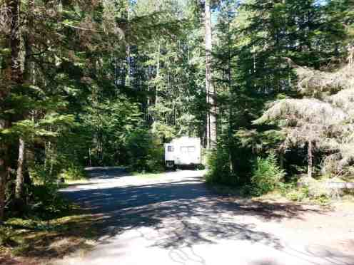 heart-o-the-hills-campground-olympic-national-park-13