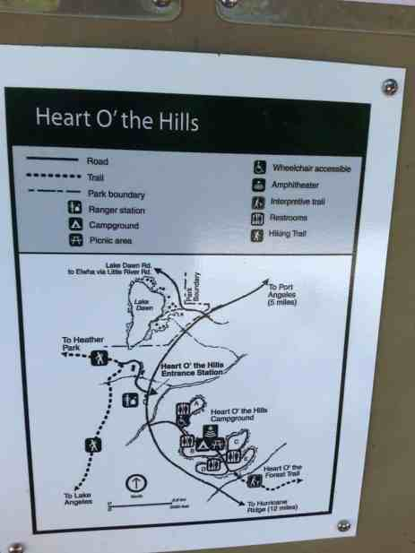heart-o-the-hills-campground-olympic-national-park-16