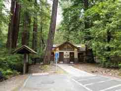 hidden-springs-campground-humboldt-redwoods-state-park-10