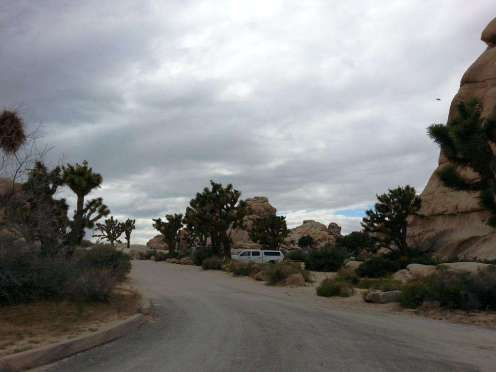 hidden-valley-campground-joshua-tree-national-park-2