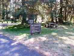 hoh-campground-olympic-national-park-03