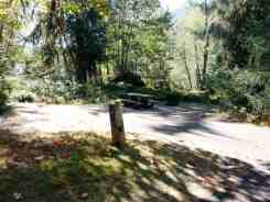 hoh-campground-olympic-national-park-08