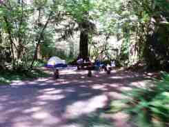 hoh-campground-olympic-national-park-16