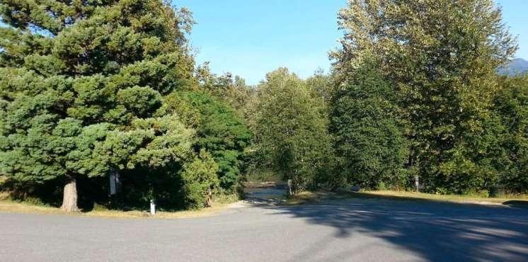 howard-miller-steelhead-park-rockport-wa-13
