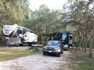 Indian Forest Campground in Saint Augustine Florida Spacing
