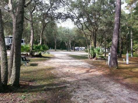 Indian Forest Campground in Saint Augustine Florida Pull thru in trees